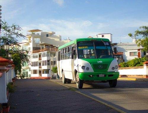 Puerto Vallarta Buses for Dummies